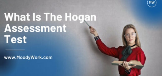 What is the hogan Assessment