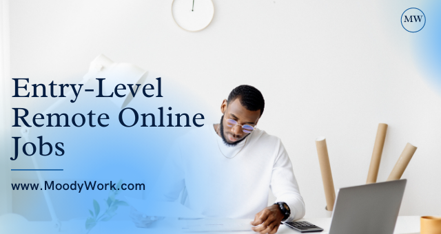 Entry Level Remote Online Jobs